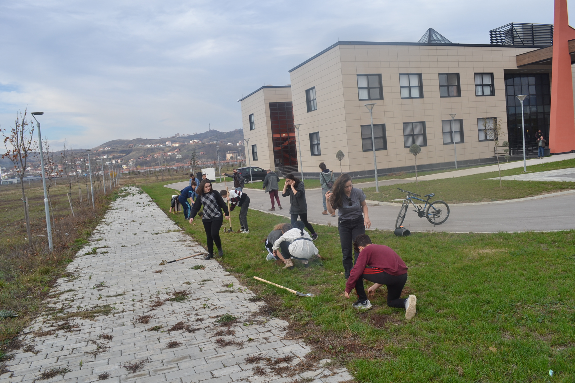 U mbëltuan 100 fidane të reja në kampusin universitar